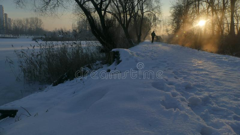 Рассвет зимы в парке стоковое фото rf
