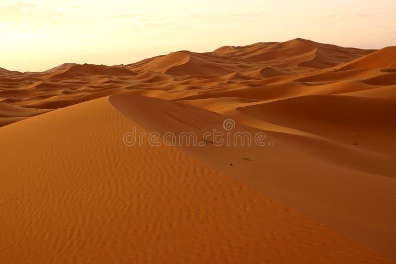 Рассвет нового дня в дюнах пустыни ЭРГА в Марокко стоковое изображение rf