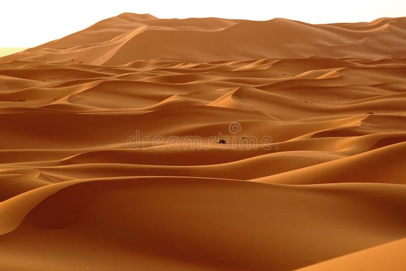 Рассвет нового дня в дюнах пустыни ЭРГА в Марокко стоковые изображения