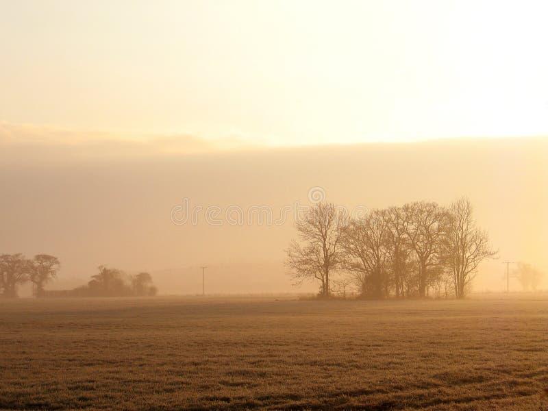 рассвет туманный стоковая фотография rf