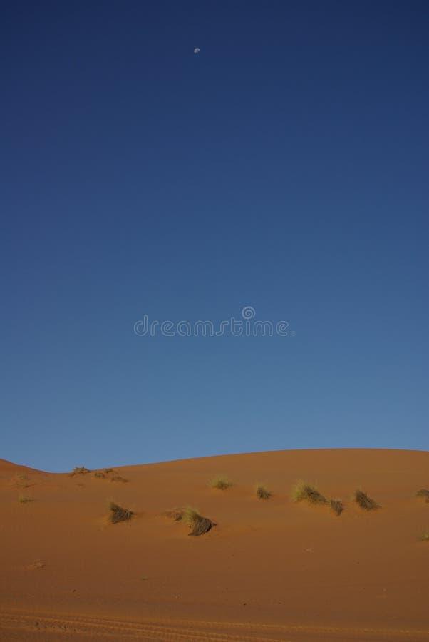 Рассвет, луна пустыни (Оман) стоковые изображения rf