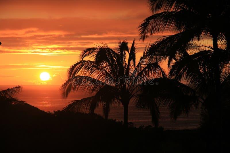 Расслабляющий гаваиский заход солнца стоковые фотографии rf