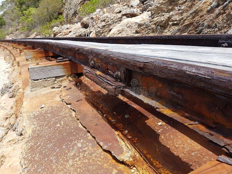 Расти покинул железнодорожный путь на северном побережье Австралии стоковое фото rf