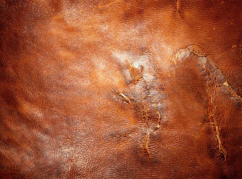 Растрепанная кожа стоковые фотографии rf