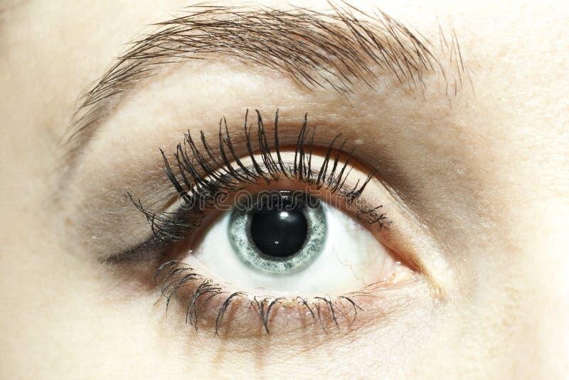 растягиванный конец сини eyes женские зрачки стоковое изображение