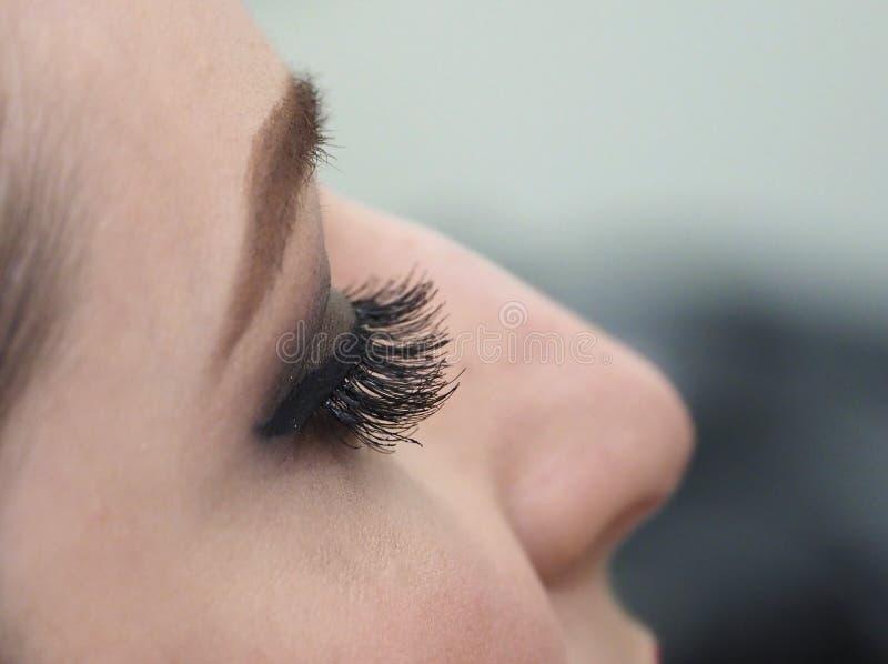 Расширение ресницы Глаз женщины с плетками стоковые фотографии rf
