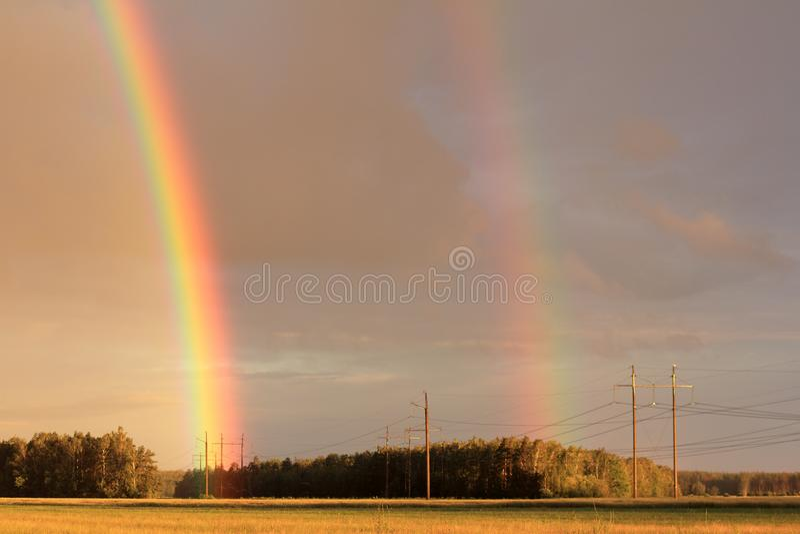 Расширенная цветовая палитра лета стоковое фото rf