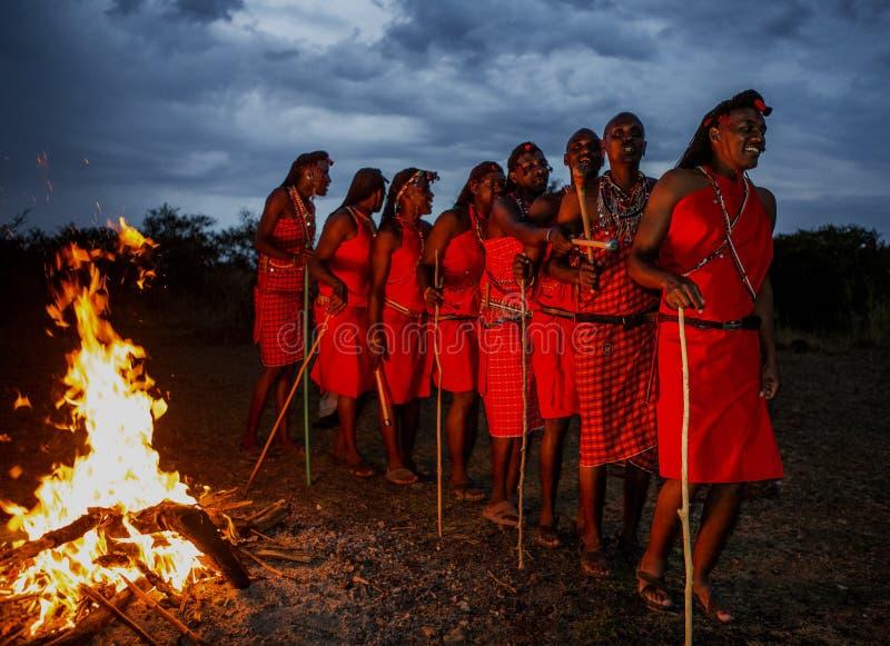 Ратники племя Masai танцуя ритуальный танец вокруг огня поздно вечером стоковое фото rf