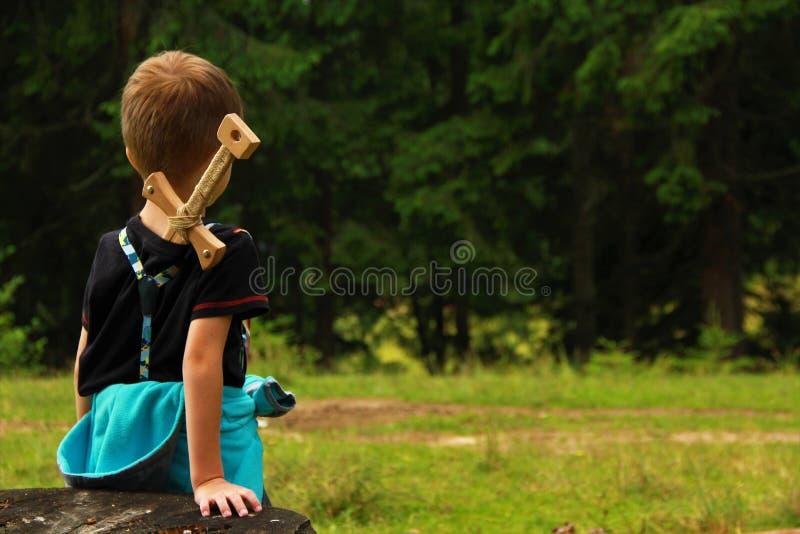 Ратник мальчика смотря полесье стоковые изображения