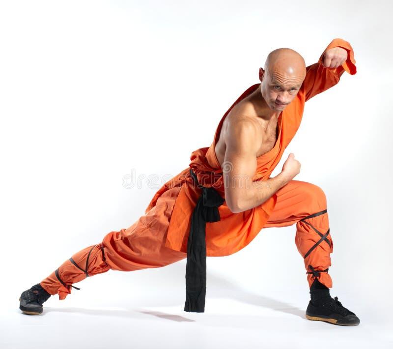 ратник shaolin монаха стоковое изображение