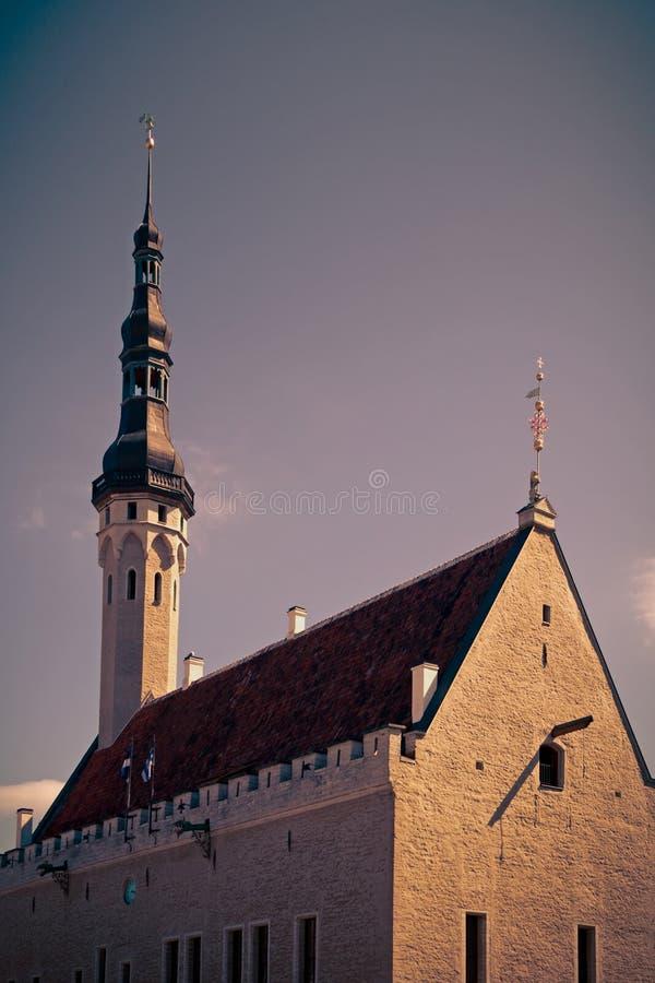 Ратуша Tallinn стоковая фотография rf