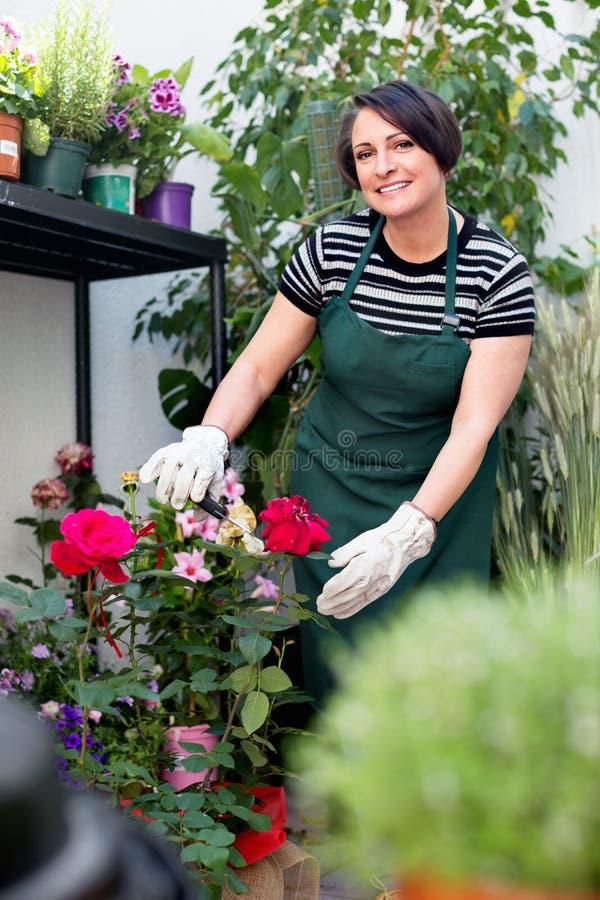 Радостный зрелый флорист женщины усмехаясь среди заводов стоковые фотографии rf