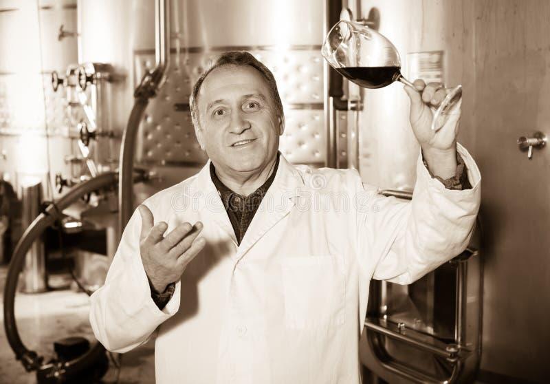 Радостный создатель вина контролирует качество вина стоковое фото