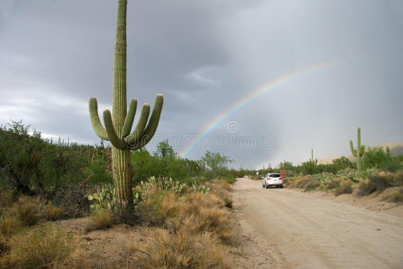 Радуга над дорогой в национальном парке Saguaro стоковая фотография