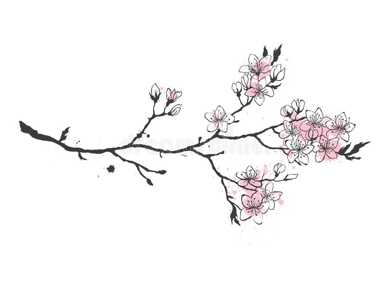 Реалистическая ветвь вишни Сакуры Японии с зацветать цветет иллюстрация вектора