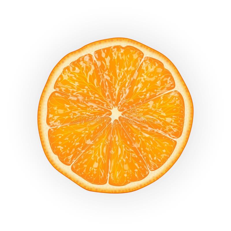Реалистическая иллюстрация вектора 3d отрезанного оранжевого плодоовощ Colourf иллюстрация штока