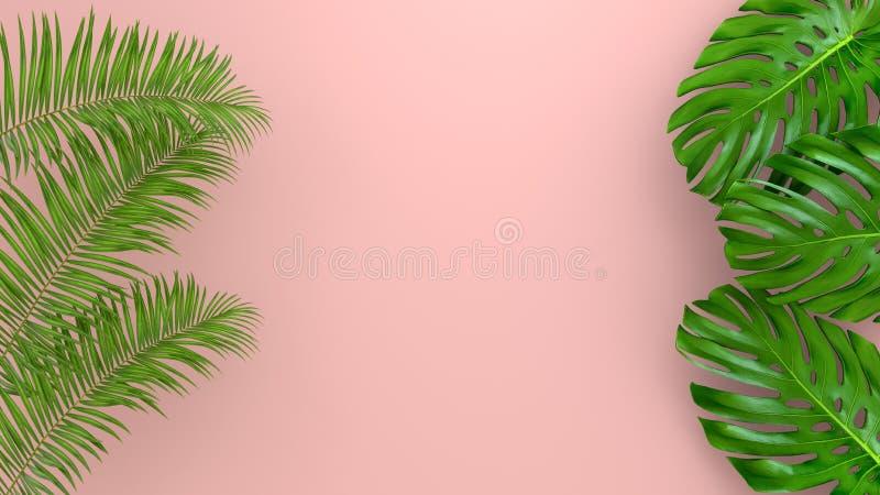Реалистическая ладонь выходит на предпосылку коралла живущую для косметической иллюстрации объявления или моды Банан тропической  стоковое фото rf