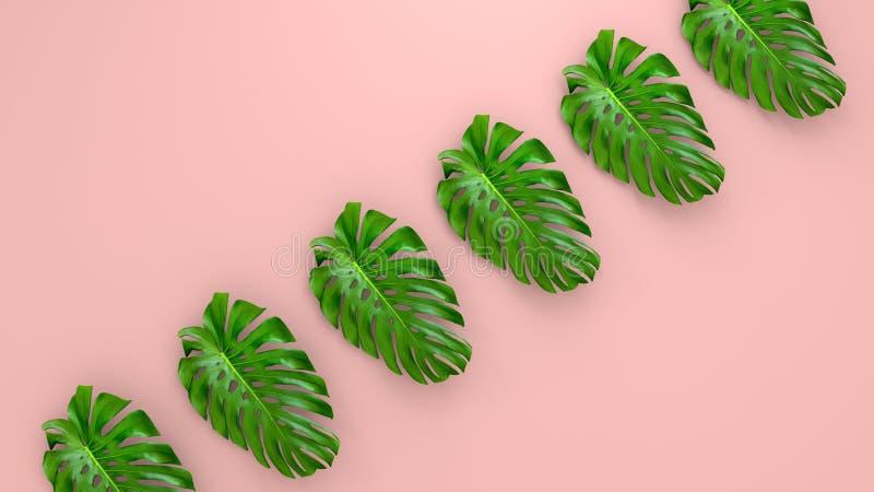 Реалистическая ладонь выходит на предпосылку коралла живущую для косметической иллюстрации объявления или моды Банан тропической  стоковые фотографии rf