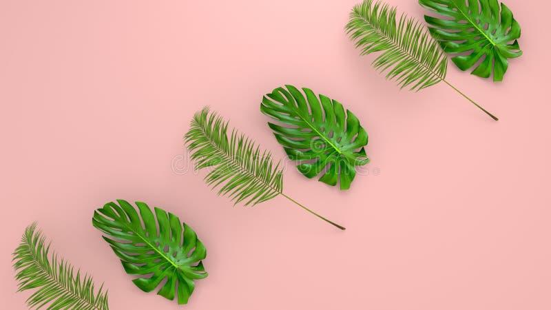 Реалистическая ладонь выходит на предпосылку коралла живущую для косметической иллюстрации объявления или моды Банан тропической  стоковые изображения rf