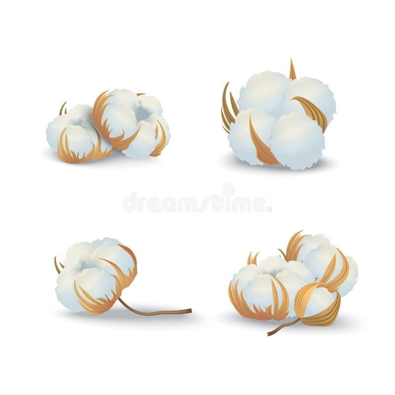 Реалистические детальные цветки хлопка 3d установили естественный материал r иллюстрация вектора