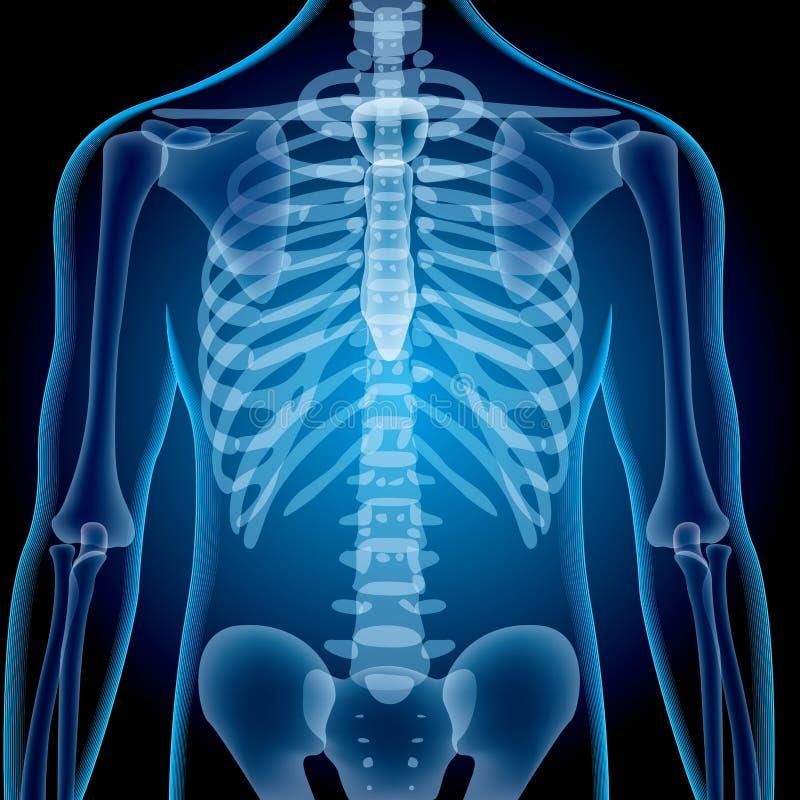Реалистические съемки рентгеновского снимка Градиенты решетки пользы изображений и влияния слоя смешивая иллюстрация вектора