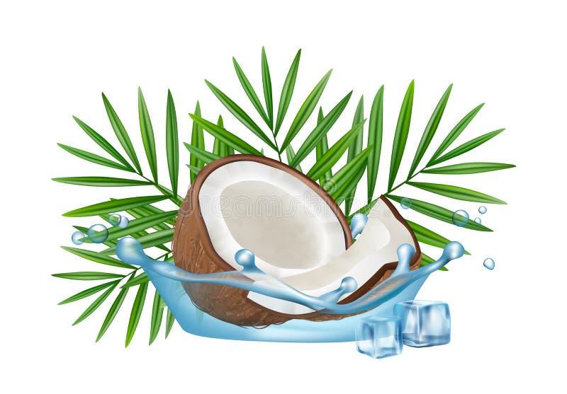 Реалистический кокос в выплеске воды, листьях ладони вектора и кубах льда изолированных на белой предпосылке иллюстрация вектора