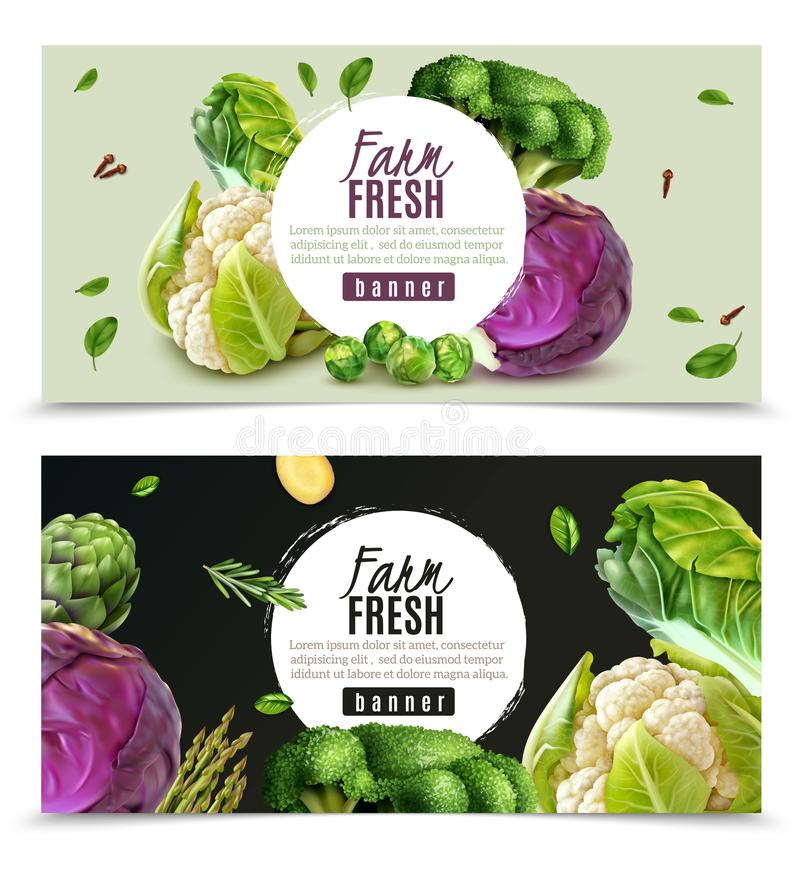 Реалистический набор знамен овощей иллюстрация штока