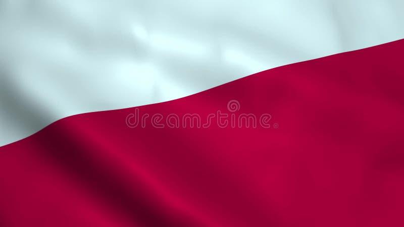 Реалистический польский флаг бесплатная иллюстрация