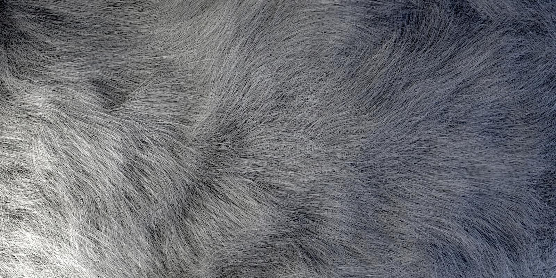 Реалистический смотря крупный план меха животных волос иллюстрация вектора