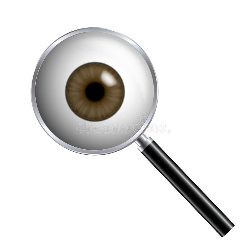 Реалистичная иллюстрация человеческого глаза с коричневыми радужными и лупающими стеклами Изолировано на белом фоне, вектор бесплатная иллюстрация