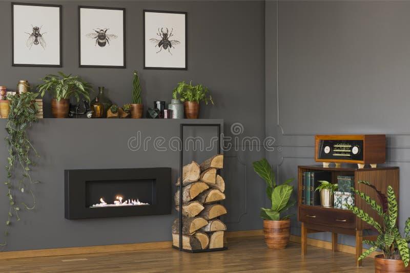 Реальное фото винтажного интерьера живущей комнаты с полкой с p стоковое изображение