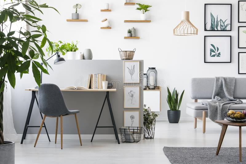 Реальное фото интерьера домашнего офиса с живущей комнатой Современные мебель и картины на стене стоковое изображение rf