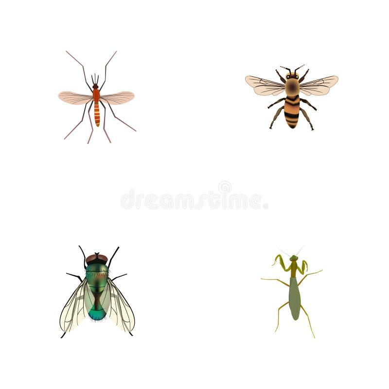 Реалистическая оса, муха комнатная, кузнечик и другие элементы вектора Комплект символов насекомого реалистических также включает иллюстрация штока