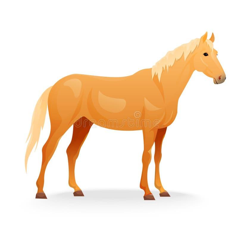 Реалистическая лошадь с красным пальто иллюстрация штока