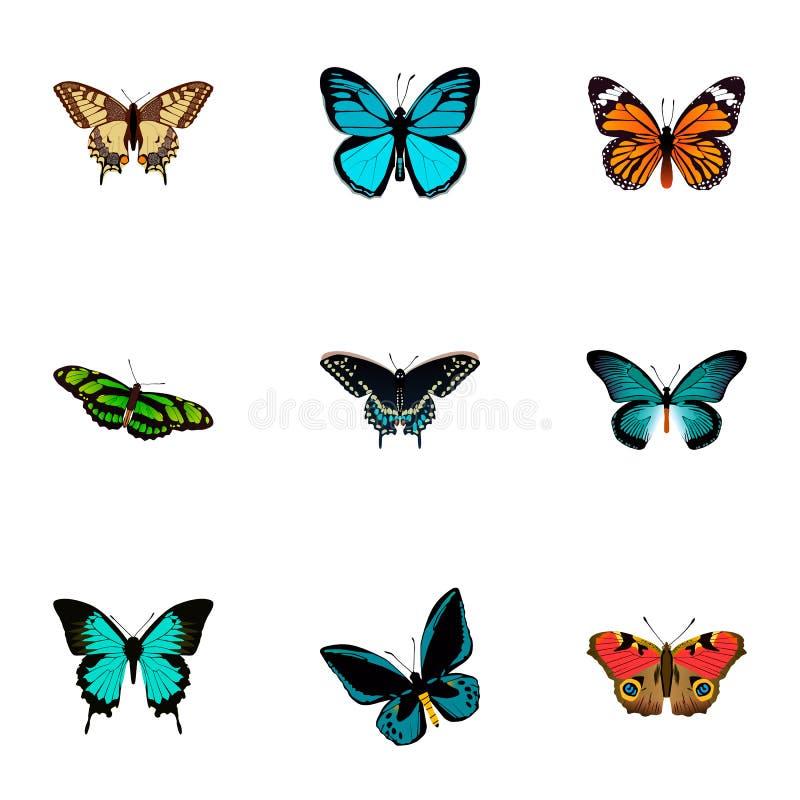 Реалистический зеленый павлин, Pipevine, монарх и другие элементы вектора Комплект символов красоты реалистических иллюстрация вектора