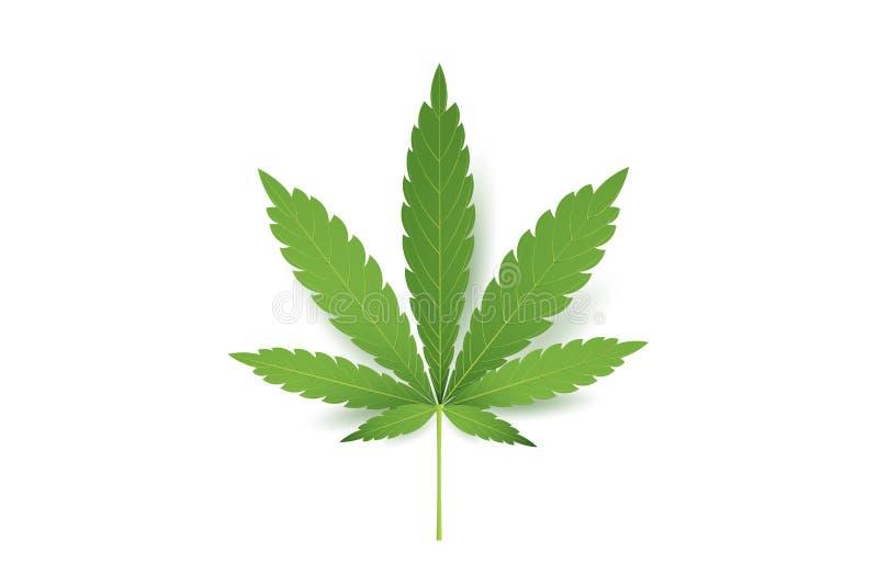 Реалистический значок лист марихуаны Изолированный на белой иллюстрации вектора предпосылки Медицинская конопля бесплатная иллюстрация