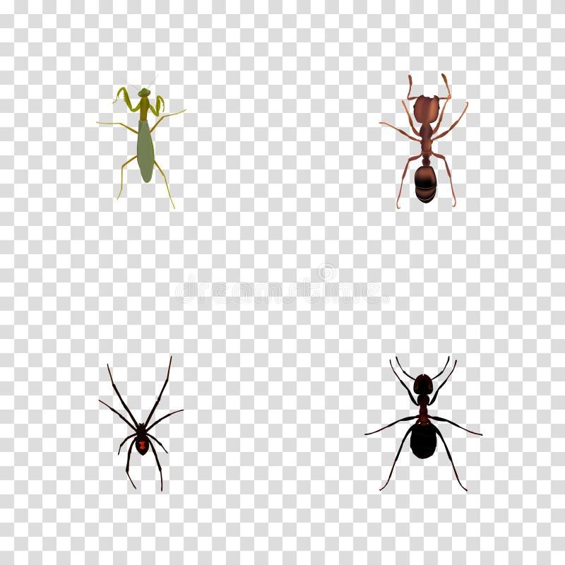 Реалистический кузнечик, муравей, муравей и другие элементы вектора Комплект символов насекомого реалистических также включает са бесплатная иллюстрация