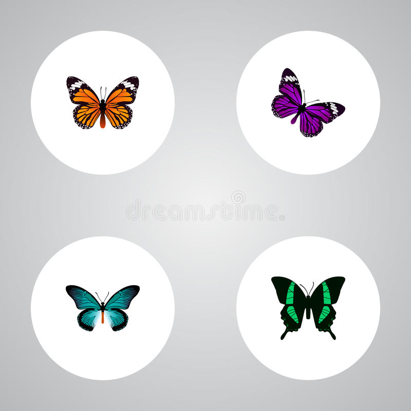 Реалистический монарх, бабочка, Pipevine и другие элементы вектора Комплект символов сумеречницы реалистических также включает ап иллюстрация штока