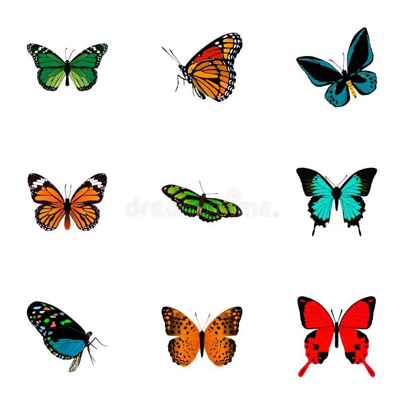 Реалистический монарх, медь, Данай Plexippus и другие элементы вектора Комплект символов красоты реалистических иллюстрация вектора