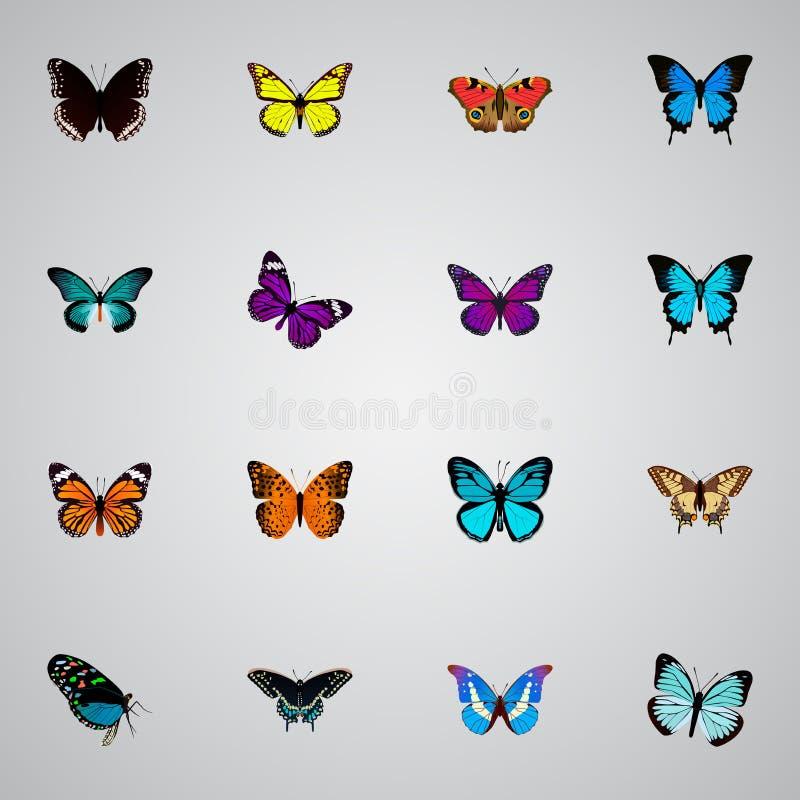 Реалистический фиолетовый монарх, Bluewing, американец покрасил даму и другие элементы вектора Комплект символов красоты реалисти иллюстрация штока