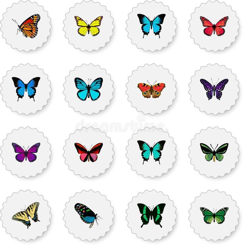 Реалистический фиолетовый монарх, Milkweed, Archippus и другие элементы вектора Комплект символов сумеречницы реалистических такж иллюстрация вектора