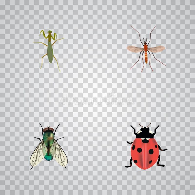 Реалистический Ladybird, мошка, кузнечик и другие элементы вектора Комплект символов черепашки реалистических также включает живо иллюстрация вектора