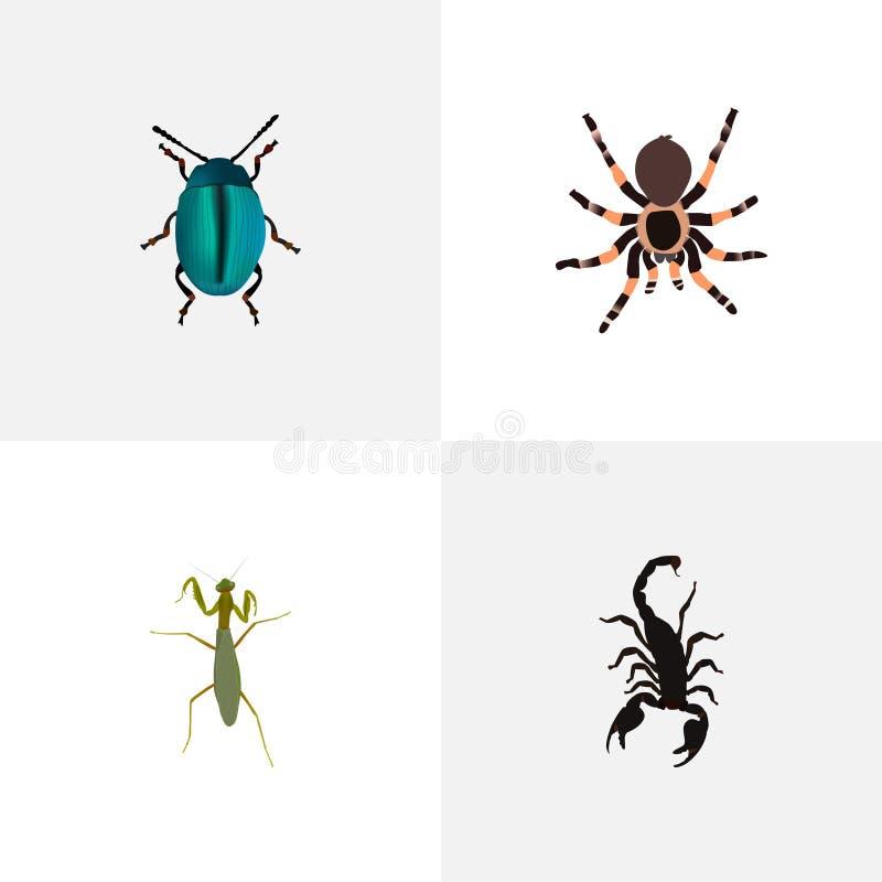 Реалистическое ядовитое, кузнечик, тарантул и другие элементы вектора Комплект символов черепашки реалистических также включает с иллюстрация вектора
