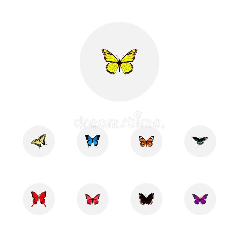 Реалистическое Archippus, общая синь, фиолетовый монарх и другие элементы вектора Комплект символов красоты реалистических также иллюстрация штока
