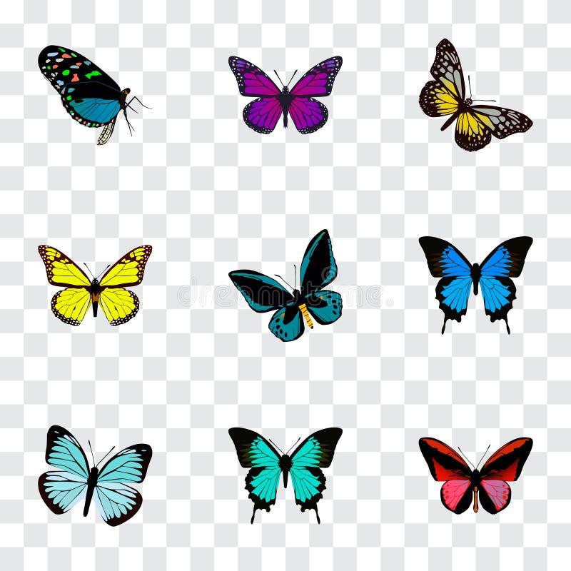 Реалистическое Demophoon, медь, фиолетовый монарх и другие элементы вектора Комплект символов красоты реалистических также включа иллюстрация вектора