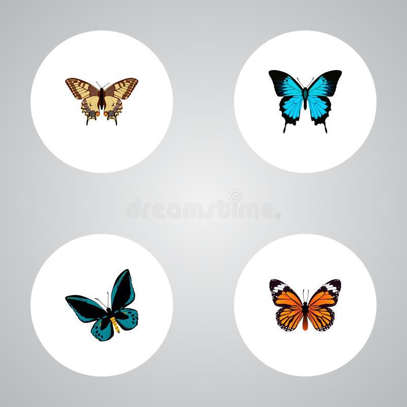 Реалистическое Papilio Ulysses, тигр Swallowtail, монарх и другие элементы вектора Комплект символов бабочки реалистических также иллюстрация штока