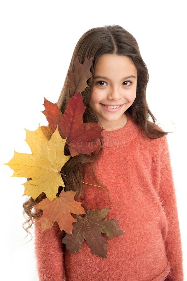 Ребенк девушки милый с упаденными листьями изолированными на белой предпосылке Ребенок наслаждается сезоном падения Сухие кленовы стоковая фотография
