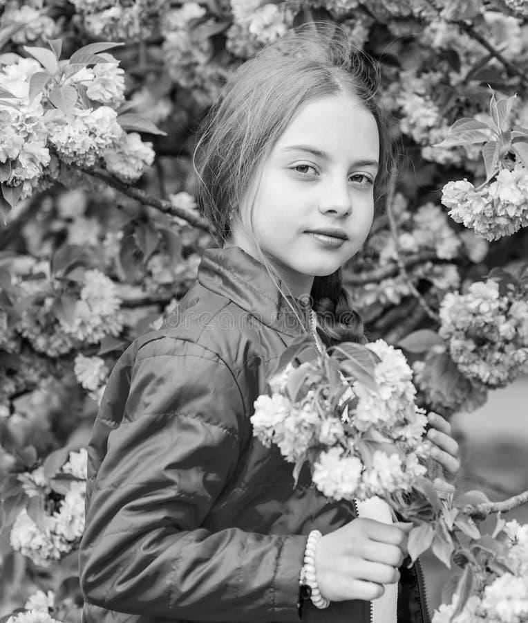 Ребенк наслаждаясь розовым вишневым цветом m Пинк girlish цвет r Пинк мой фаворит стоковое фото rf