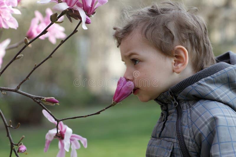 Download Ребенк пахнуть цветком стоковое фото. изображение насчитывающей жизнерадостно - 41659624