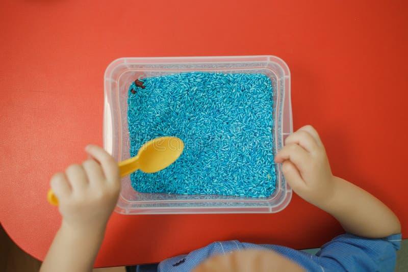 Ребенок вручает играть желтую ложку с рисом покрашенным синью в сензорной коробке Набор ` s младенца сензорный воспитательный стоковая фотография rf